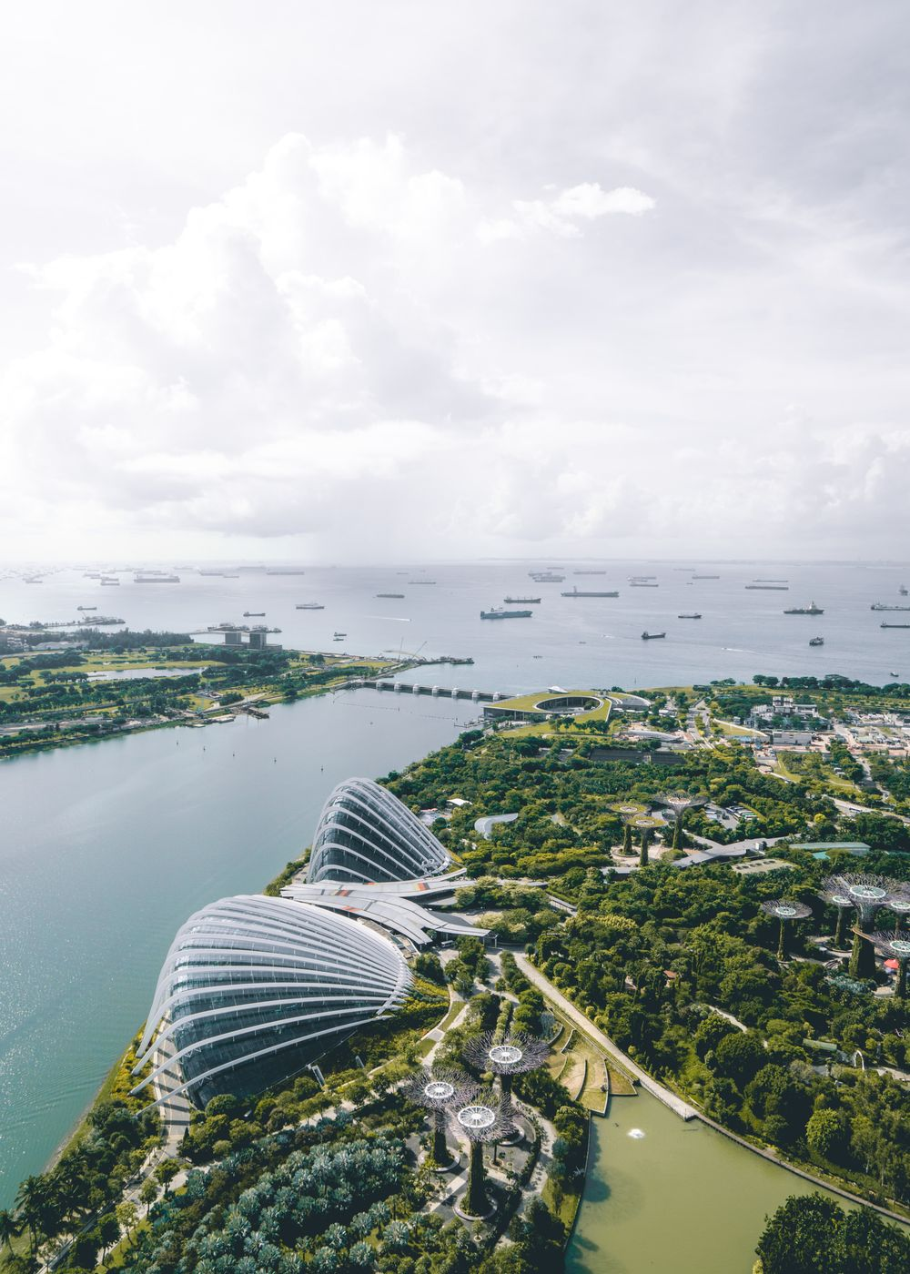 Gardens by the Bay as you see it from the Marina Bay Sands observation deck